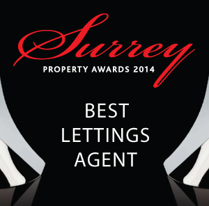 best lettings agent logo